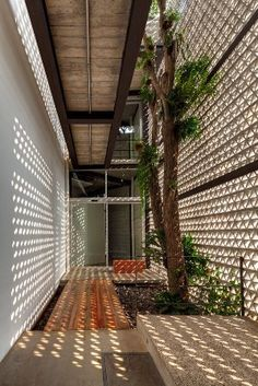 Wonderwall / SO Architecture Concrete breeze blocks forming an enclosed patio with cat walk - Architectural details Nice house nice wall Tropical Architecture, Architecture Details, Landscape Architecture, Interior Architecture, Landscape Design, Natural Architecture, Light Architecture, Biophilic Architecture, Architecture Tools