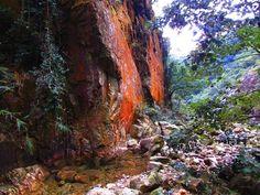 wild hong kong hike