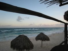 Playa del Carmen Travel Guide from Trip Advisor: tips on safety, neighborhoods, food, weather etc...
