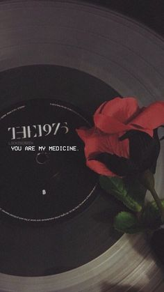 Aesthetic Drug Aesthetic Iphone Black And White Wallpaper The 1975 Wallpaper, Musik Wallpaper, Red Wallpaper, Tumblr Wallpaper, Screen Wallpaper, Wallpaper Quotes, Wallpaper Backgrounds, Tumblr Backgrounds, Phone Backgrounds