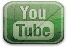 give you 100 youtube like +100 youtube views for $1