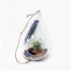 mini terrarium ornament