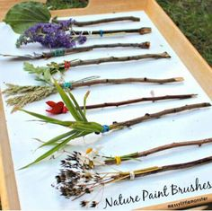A fun outdoor art activity for kids. Easy enough for toddlers and preschoolers (EYFS). holiday activities for kids eyfs Make your own Nature Paintbrushes - Painting with flowers and nature Diy Nature, Art Et Nature, Theme Nature, Nature Hunt, Nature Activities, Outdoor Activities For Kids, Outdoor Learning, Nature Based Preschool, Summer Activities