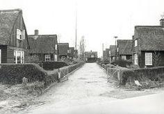 Zo zag het er vroeger uit...  Hofje met Oostenrijkse woningen van Organon aan de Ruwaardstraat in Oss
