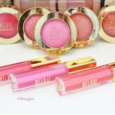 Love Milani - they are one of my favorite drug store brands. the lip glosses are great, blushes and eye shadows. all go on very well