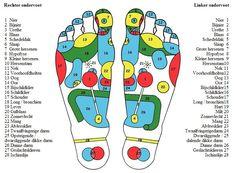 Voetreflexzone Massage | Salon Moy Futu
