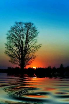 With every sunset, a sunrise Beautiful Sunset, Beautiful World, Beautiful Images, Pretty Images, Beautiful Flowers, All Nature, Amazing Nature, Nature Images, Nature Pictures
