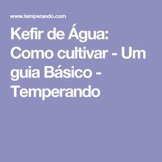 Kefir de Água: Como cultivar - Um guia Básico - Temperando