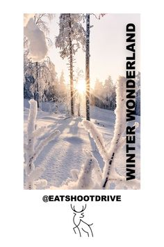 Wilderness adventure in the heart of Finnish Lapland. Adventure photoshoots and private tours. Lapland Finland, Midnight Sun, Adventure Photography, Tour Operator, Couple Photography, Books Online, Wilderness, Landscape Photography, Northern Lights
