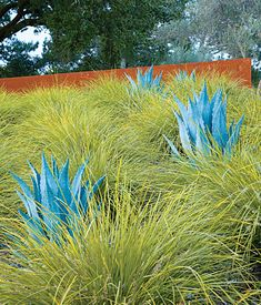 Grass and agave. Corten is a nice touch too