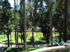 Centro de São Paulo: Lago Cruz de Savóia no Jardim da Luz