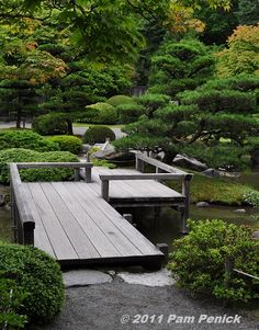 Seattle Japanese Garden - tranquil oasis in the city