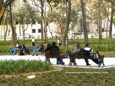Solos y acompañados. / Alone and accompanied.