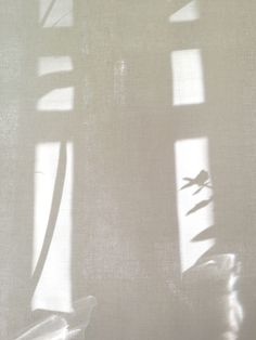 light and shadow - color palette and mood board inspiration. Shadow Play, Shadow Art, Window Shadow, Beige Aesthetic, Slow Living, Shades Of White, Light And Shadow, Natural Light, Art Photography