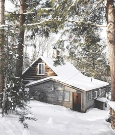 Cabin in the woods (Huntsville, Ontario) by celine (@cehuynh) on Instagram