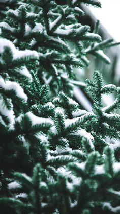 13 x Winter Landscapes iPhone Wallpaper Collection | Preppy Wallpapers