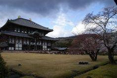 奈良市 Picture