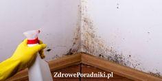 Pleśń w domu to problem, który może być spowodowany przez materiały, z których zostały wytworzone poszczególne przedmioty, wpływ klimatu i brak odpowiedniej wentylacji. Living Room Decor, Soda, Diy And Crafts, Life Hacks, Tutorial, Detox, Cleaning, Rustic, Tips