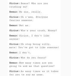 Sirius Black Remus Lupin
