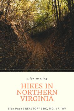 Northern Virginia is home to a wide range of outdoor activities, but hiking is definitely one of the best. Learn a few of my favorite places to go hiking in Loudoun County and surrounding areas. #hiking #hike #loudouncounty Loudoun County Virginia, Great Places, Places To Go, Leesburg Va, Fairfax County, Go Hiking, Northern Virginia, Best Hikes, Outdoor Activities