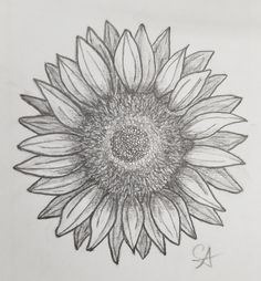 sunflower outline - Google Search | Permanent marker ...
