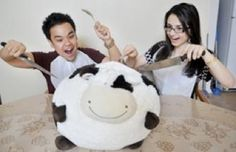 """""""When you guys said 'we'd love to have you for dinner'...."""" #squishable #plush #fan #photo #cow"""