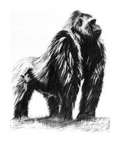 gorilla tattoo - Google Search