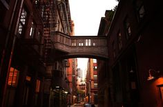 Staple Street Skybridge - New York City. By Vivienne Gucwa
