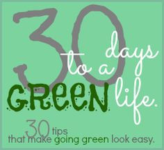 30 Days to a Green Life: 30 tipes that make going green look easy