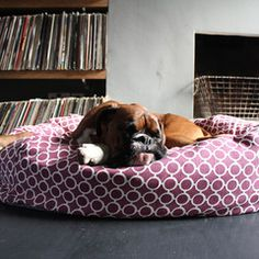Donut Bolster Dog Bed - Red Circles Bone and Rag £110