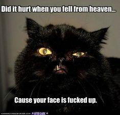 Hahahhahaha