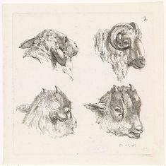 Barend Hendrik Thier | Vier koppen, van een ram en van geiten, Barend Hendrik Thier, 1777 |