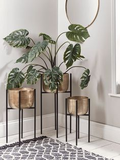 Three Standing Brass Planters - NEW Three Standing Brass Planters The Effective Pictures We Offer You About diy A quality picture - Indoor Flower Pots, Indoor Plant Pots, Indoor Planters, Indoor Garden, Potted Plants, Flower Plants, Garden Plants, Tire Planters, Concrete Planters
