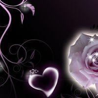 Rose and Hearts We Heart It Wallpaper, Bunt, Hearts, Rose, Pictures, Photos, Pink, Roses, Grimm
