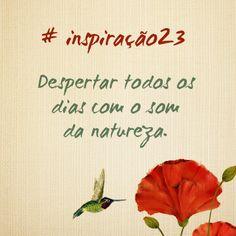 #inspiração23