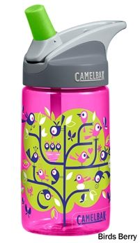 camelback better bottle
