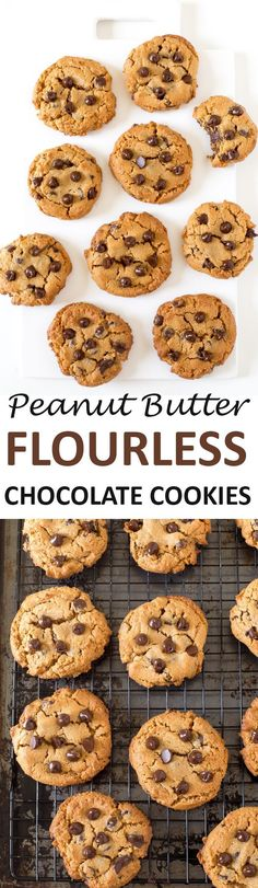 You Have Meals Poisoning More Normally Than You're Thinking That Flourless Peanut Butter Chocolate Chip Cookies. Gluten-Free And Ready In Less Than 20 Minutes Paleo Dessert, Healthy Desserts, Delicious Desserts, Dessert Recipes, Yummy Food, Dessert Ideas, Flourless Chocolate Chip Cookies, Chocolate Biscuits, Chocolate Peanut Butter