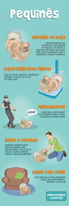 Fonte:http://www.adorocaes.com.br/pequines