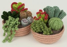 Crocheted cacti by June Gilbank