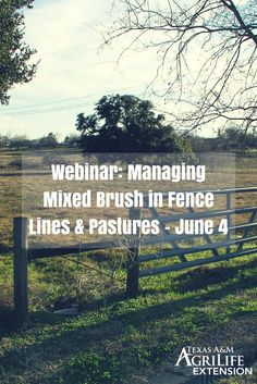 Webinar: How to Manage Mixed Brush in Fence Lines & Pastures - June 4  Fence lines can get expensive fast. This webinar will help you learn how to properly maintain your investment!