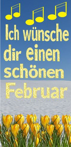 Ich wünsche dir einen schönen Februar 🌞🎵🌼☕ #FebruarGrüße #Eichhörnchen Neuer Monat, Videos, February, Nice Asses
