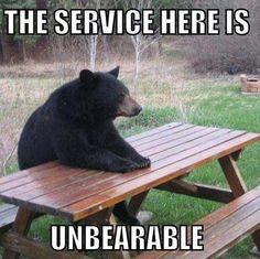 Schlechter Service und Bärenhunger