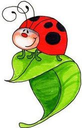 Cute lady bug doodle drawing *Home* - Gleebooks