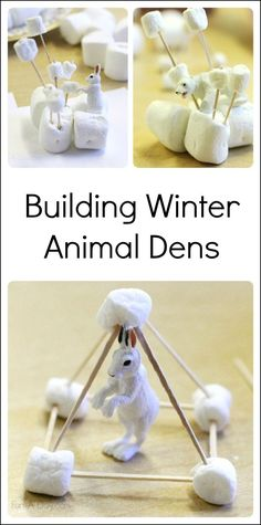 Engineering project for kids - building arctic animal dens with marshmallows and toothpicks