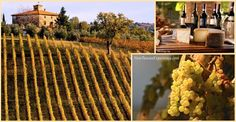Don't miss Tuscany's amazing wine and cheese!