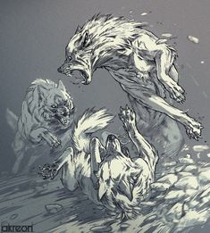 Lion Sketch, Wolf Sketch, Animal Sketches, Animal Drawings, Art Drawings, Wolf Drawings, Wolf Illustration, Wolves Fighting, Wolf Poses