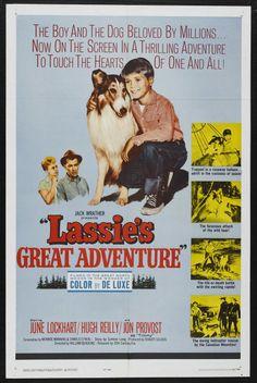 Lassie's Great Adventure (1963) Stars: June Lockhart, Hugh Reilly, Jon Prevost, Robert Howard, Richard Kiel