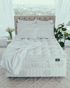 Every Synchronized Support is carefully comprised of layers and layers of all-natural fill materials. Joma wool, natural Talay Latex and organic cotton provide a cloud-like body for a precise level of comfort and support. Interior Design Images, Nighty Night, Mattresses, Latex, Comforters, Organic Cotton, Fill, Cloud, Relax