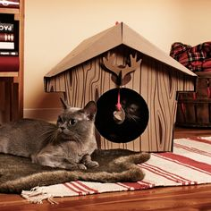 Everyone knows, furry friends go crazy for a cardboard box.   An Interesting way to waste money on cats! :)