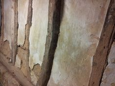 Cellar wall.